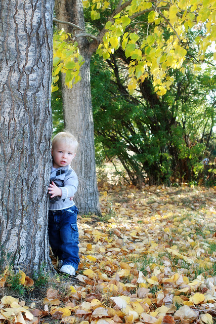 Fall Pictures 2011