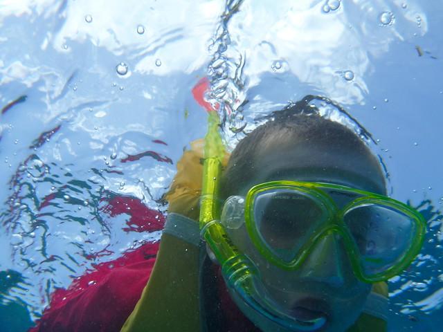 Snorkeling Luca