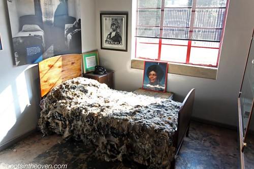 Jackal Pelt Bed!