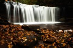 Oneida Falls (MDanielsonPhoto) Tags: autumn fall leaves waterfall foliage redrock rickettsglen oneida rickettsglenstatepark oneidafalls