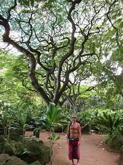 among giants (redjoe) Tags: hawaii oahu redjoe joehorvath