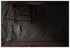 Fading Dream (Livi Dela Victoria) Tags: old light abandoned window dark exercise muscle dream rope boxer bodie fading held fallingapart elluminate fadingdream lividelavictoria