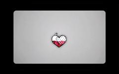 heart solider