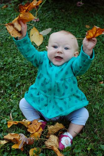 leaves!!1!