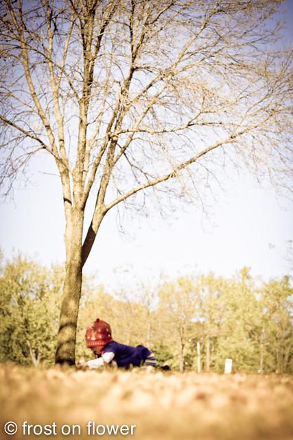 20111020-8months-23.jpg