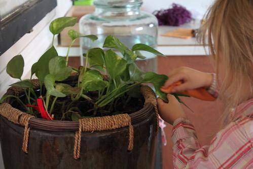 Montessori Practical Life 2