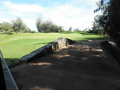 Turtle Bay Colf Course 246
