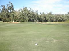 Turtle Bay Colf Course 321