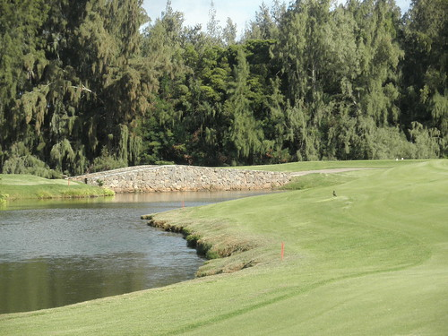 Turtle Bay Colf Course 338