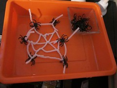 Putting Spiders on Spider Web Activity (Photo from Barefoot in Suburbia)