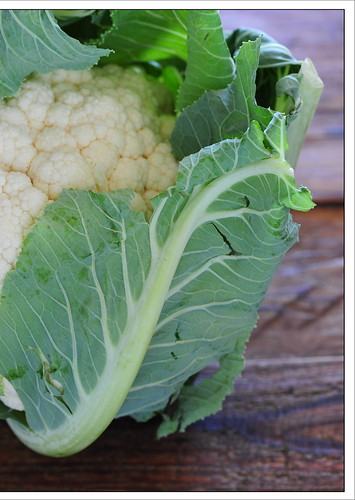 coronation cauliflower5