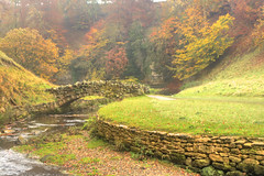 Mist opportunity (jimsumo999) Tags: bridge autumn mist fall yorkshire royal studley skell