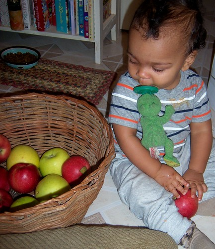 apples make good toys!