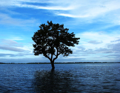 Haor, Sunamganj, Bangladesh. Photo by Balaram Mahalder, 2009