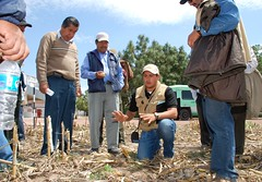Teaching farmers about conservation agriculture (CIMMYT) Tags: ca people man latinamerica field mxico training mexico experimental gente headquarters visit demonstration mexican staff learning campo technician farmer teaching diffusion agriculture ac visitor showing mexicano plot sede hombre visita speaking researchcenter difusin observing amricalatina empleado demonstrating agricultura explaining parcela enseando observando aprendiendo agricultor mostrando researchstation visitante hablando tcnico latinoamrica capacitacin demostracin dissemination capacitybuilding explicando elbatn enseanaza experimentstation demostrando cimmyt conservationagriculture centrodeinvestigaciones agriculturadeconservacin estacinexperimental estacindeinvestigacin desarrollodecapacidades