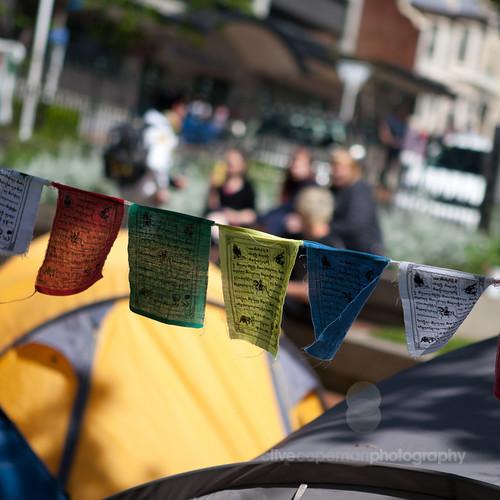 Occupy Dunedin
