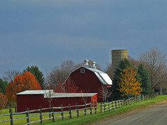 The Red Barn 96/365 (ÜℝℬⒶÑ Š№Θρ) Tags: trees color green yellow barn fence michigan shed silo project365