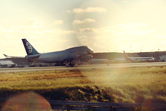 LAX (Ole Lukoie) Tags: california light usa airplane losangeles boeing lax boeing747 747 747400 boeing747400 losangelesinternationalairport airnewzeland zknbv cn269101180