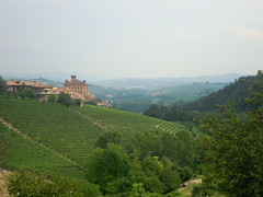 "barolo • <a style=""font-size:0.8em;"" href=""http://www.flickr.com/photos/67097613@N06/6337456701/"" target=""_blank"">View on Flickr</a>"