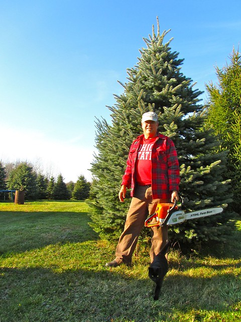 About Us Paradise Hill Christmas Tree Farm