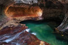 "The Express – Zion Subway (Willie Huang Photo) Tags: autumn southwest fall nature subway landscape utah nationalpark scenic canyon foliage virgin trail zion zionnationalpark emeraldpool canyon"" northcreek leftfork ""slot zionsubway"