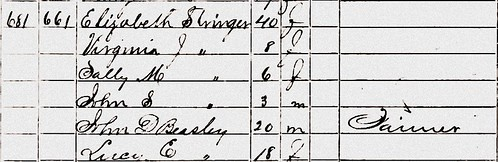 Elizabeth Pitt 1860 US Census