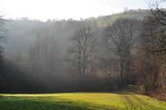 Dreilnderstein (anuwintschalek) Tags: november autumn landscape austria haze vines herbst hazy loodus sgis 2011 buckligewelt 18200vr diesig nikond90 knklikmaailm kuppelmaastik