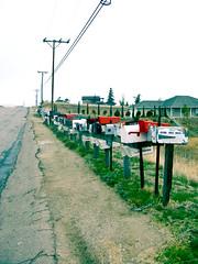 (Lady Pandacat) Tags: california mailboxes tehachapi 2011 pandacat canong9 pandacatbaby tinaangel