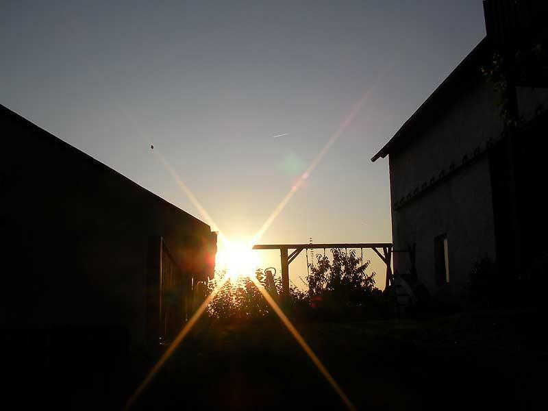 Sonnenuntergang über dem Kastanienhof Selz
