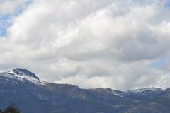 Primavera, extraa primavera (Trix: Pierre qui roule .......) Tags: muro primavera nieve alicante montaa nube alcoi 2012 nwn albaricoquero