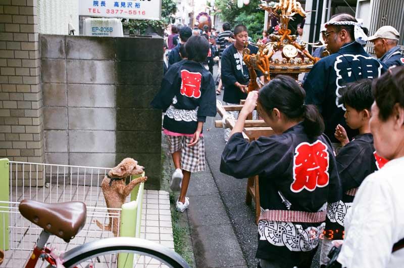 kidsmatsuri (62 of 113)