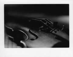 (In my entirety) Tags: white black film 50mm dof violin string f18 ilford fp4 praktica 125 mtl5