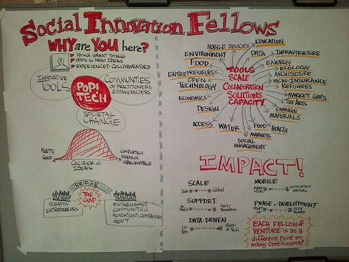 PopTech Social Innovation Fellows: Cross Section of Impact