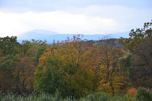 october 2011 301