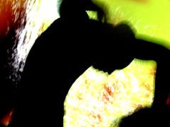 Borderline Biennale 2011 - L'Histoire de l'Oeil, François Moncarey & Kevin Ramseier (CENC) acting performance IMG_4166 (Abode of Chaos) Tags: streetart france art mystery museum painting blood outsiderart chaos symbol contemporaryart secret 911 explosion taz eros container event vision satomi freemasonry hallucination sang ddc mystic cyberpunk manifestation pmd alchemy modernsculpture prophecy 999 endoftheworld epiphany curator psychosis dadaisme theophany nutriscoetextinguo salamanderspirit organmuseum demeureduchaos thierryehrmann lukaszpira abodeofchaos empressstah onirisme jonjohn postapocalyptique maisondartiste artistshouses actingperformance coralietrinhthi borderlinebiennale visavajara lespritdelasalamandre danielromani survivetheapocalypse servergroup bodyhacktivism ajsploshgirl tanzweiter lakonik kirilbikov françoismoncarey kevinramseier sorayalinsada steelangelsofmercy