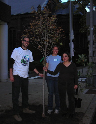 Tree Tenders Dan Brown, Stephanie Clymer, and Julie Slavet with a newly planted street tree.