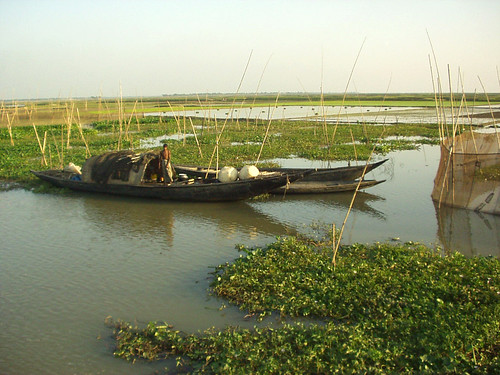 Fishery, Bangladesh. Photo by Brahman Baria, 2004