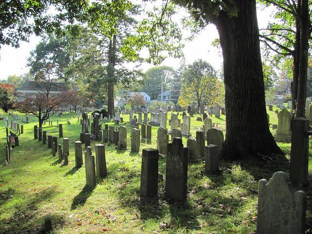 fall2011 069