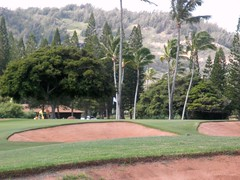 Turtle Bay Colf Course 137b
