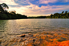 Sunset at MacRitchie Reservoir (st_tuper33) Tags: park sunset sky lake water forest landscape nikon singapore colours wideangle spot tourist reservoir tokina boardwalk macritchie uwa d90 tokina1116mmatxpro sttuper
