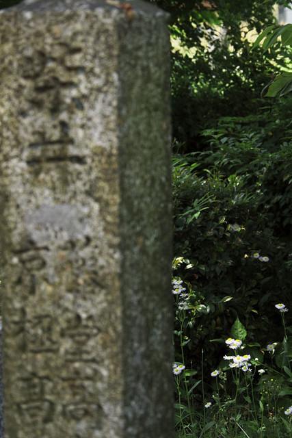 110521_120742_関ヶ原_籐堂・京極陣地跡
