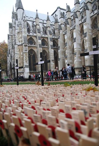 Westminster Abbey Field of Remembrance