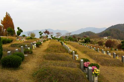 graveyard03