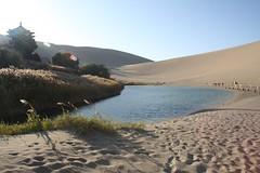 Oasis in the Gobi Desert (deanspic) Tags: china reed pagoda oasis sanddune phragmites dunhuang gobidesert commonreed cresentmoonlake bbcatour