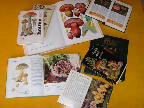 paddenstoelenboek