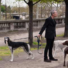 (-will wilson- (away)) Tags: street dog man paris france public square candid z tuileries 2011 artlibre continuesframes squareinthecity