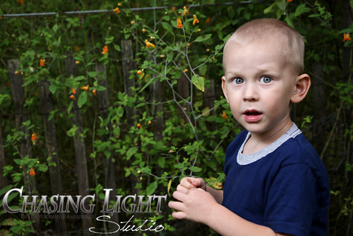 Neville Family by Chasing Light Studio ~ Pie's Photography