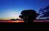 Fazenda Brancas - planetário (Edison Zanatto) Tags: sunset brazil sky naturaleza sun sol southamerica nature brasil skyline backlight sunrise contraluz landscape atardecer soleil natureza natur paisaje paisagem pôrdosol cielo 夕陽 cerrado crépuscule landschaft sonne paesaggi ocaso sonneuntergang alvorada sãojorge contrejour controluce anochecer anoitecer coucherdesoleil goiás crepúsculo nascente contrallum puestadelsol americadosul poente puestas fimdetarde altoparaíso luscofusco chapadadosveadeiros südamerika centrooeste nikond200 dilúculo postadelsol firsttheearth regiãocentrooeste crepúsculovespertino postadosol altoparaísodegoiás continentesulamericano fazendabrancas pousadadosanões edisonzanatto hotelfazendabrancas