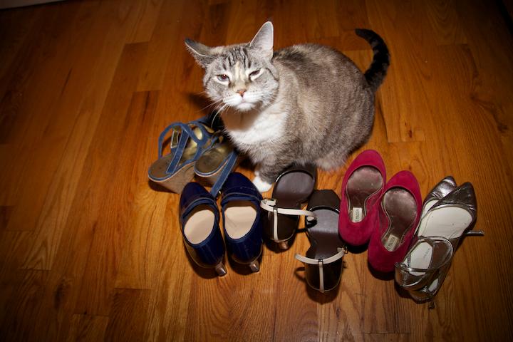 6276808734 2183455e73 o shoe guard