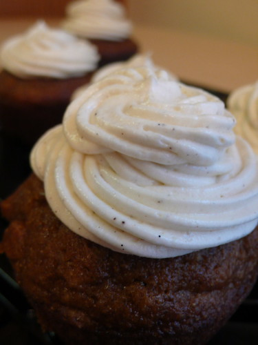 Pumpkin cupcakes with cream cheese vanilla bean frosting